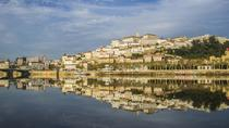 Aveiro and Coimbra - Small Group Tour with lunch and Boat Cruise from Porto, Porto, Day Trips