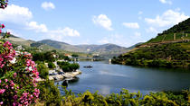 Douro Valley Small-Group Tour with Wine Tasting, Portuguese Lunch and Optional River Cruise, Porto