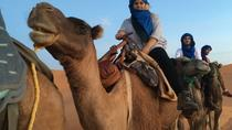 Small GroupMarrakech to Fez Desert Tour 3 days, Fez, Multi-day Tours