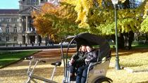 30-Minute Sightseeing Tour of Strasbourg by Pedicab, Strasbourg, City Tours