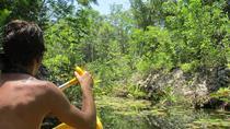 Tankah Park Five Cenotes Adventure Tour from Tulum