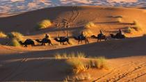 Day and Night by Camels in Erg chebbi Dunes, Ouarzazate, 4WD, ATV & Off-Road Tours