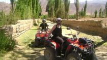 3-Day Tour of Cachi, Laguna Brealito and National Park Los Cardones, Cachi, Multi-day Tours
