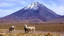 Ascent licancabur volcano, San Pedro de Atacama, Overnight Tours