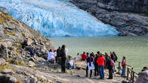 Balmaceda and Serrano Glacier Navigation, Puerto Natales, Day Cruises