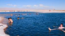 Cejar Lagoon Half-Day Tour from San Pedro de Atacama, San Pedro de Atacama, Half-day Tours