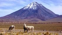 Overnight Licancabur Volcano Trekking Tour from San Pedro de Atacama, San Pedro de Atacama,...