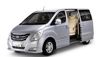 Private Departure Transfer from Pucon City to Temuco Airport, Pucón, Airport & Ground Transfers