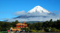 Shore Excursion: Osorno Volcano Private Tour from Puerto Montt, プエルト・モント