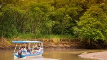 Palo Verde Wildlife Tour from Playa Hermosa-Coco Beach, Tamarindo, Eco Tours