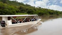 Palo Verde Wildlife Tour from Tamarindo, Tamarindo, Eco Tours
