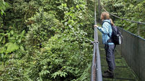 Sky Walk Tour with Hanging Bridges and Nature Preserve, Tamarindo, Day Trips