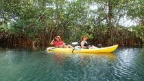 Samara Beach Wildlife and Mangrove Kayaking, Sámara, Kayaking & Canoeing