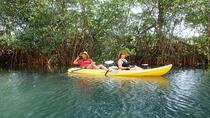 Samara Beach Wildlife and Mangrove Kayaking Tour, Sámara, Kayaking & Canoeing
