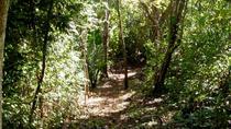 Samara Trails Including Werner Sauter Biological Reserve, Sámara, Eco Tours