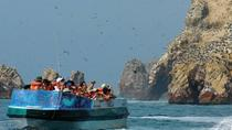 Full-Day Paracas Reserve and Ballestas Islands from Lima, Lima, Day Trips