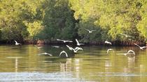 Juan Venado Island Nature Reserve, León, Day Trips