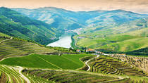 Douro Valley Day Trip with Lunch from Porto, Porto, Day Trips