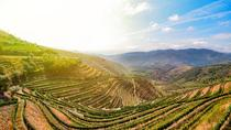 My Douro - Full Day All Included, Northern Portugal, Day Trips