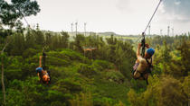 Zipline Tour On Oahu's North Shore, Oahu, Snorkeling