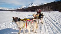 Snow Racket Trekking and Dog Sled Night Tour from Ushuaia, Ushuaia, Hiking & Camping