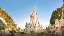 Exclusive luxury day trip to Orlando Walt Disney from Sarasota, Sarasota, Day Trips