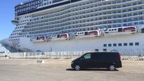 Private Transfer from Civitavecchia Port to Fiumicino Airport - Tour Option Available
