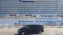 Private Transfer from Hotel in Rome to Civitavecchia Port - Tour Option Available