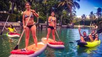 Paddleboard Rental in Miami, Miami, Other Water Sports