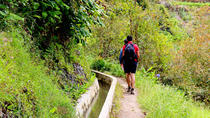 Easy Madeira Levada Walk - Maroços, Funchal, Walking Tours