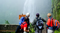 Levada Rabaçal and 25 Fountains Walking Tour, Funchal, Nature & Wildlife