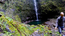 Madeira Levada Walk - Caldeirao Verde , Funchal, Walking Tours