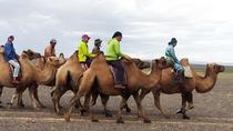 3 Day Karakorum and Elsen Tasarkhai tour, Ulaanbaatar, Multi-day Tours