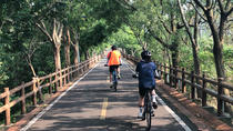 Leisure Cycling Experience & Gaomei Wetlands Sunset & Fengjia Night Market, Taichung, Bike & ...