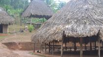 Embera Village and Jungle Tour from Panama City, パナマ市