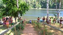 Embera Village and Jungle Tour from Panama City, Panama City, Day Trips