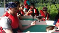 Ocean to Ocean Panama Canal and Jungle Tour, Panama City, Full-day Tours