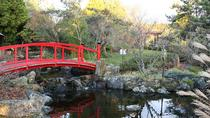 Hobart Flora and Fauna Tour Including the Royal Botanical Gardens, Hobart, Ports of Call Tours