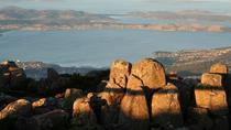 Small-Group Tour from Hobart Including Mt Wellington, Bonorong Wildlife Sanctuary and Richmond Historic Village