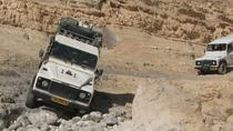 Ramon ceater Paran desert and Mt Karkom the ultimate Negev desert 4x4 jeep tour experience, Sde ...