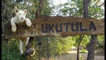 African Wildside Experience, Johannesburg, Nature & Wildlife