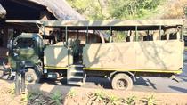 Pilanesberg Safari in Open Vehicle from Johannesburg or Pretoria