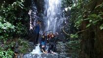 1 Day Forest Waterfalls Tour Batu Caves KL City Lunch, Kuala Lumpur, Half-day Tours