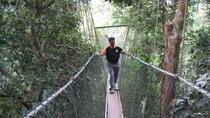 Full-Day Taman Negara Tour from Kuala Lumpur, Kuala Lumpur, Day Trips