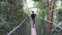 Full Day Taman Negara Tour with Batu Caves with Complimentary Dinner, Kuala Lumpur, Day Trips