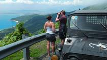 Half-Day Son Tra Peninsula Tour by Jeep, Da Nang, Half-day Tours