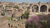 Private Tour: Palatine Hill in Rome Including Domus Augustana, Rome, null