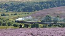 Private Tour to Whitby and the North York Moors from York