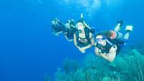 Beginners PADI Scuba Diving in Murcia, Murcia