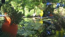 Majorelle Garden and Palmeraie Camel Ride from Marrakech, Marrakech, Half-day Tours